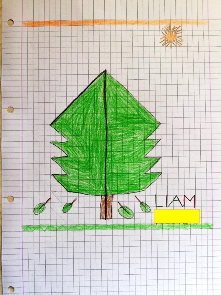 """""""Un"""" abete (Liam)"""